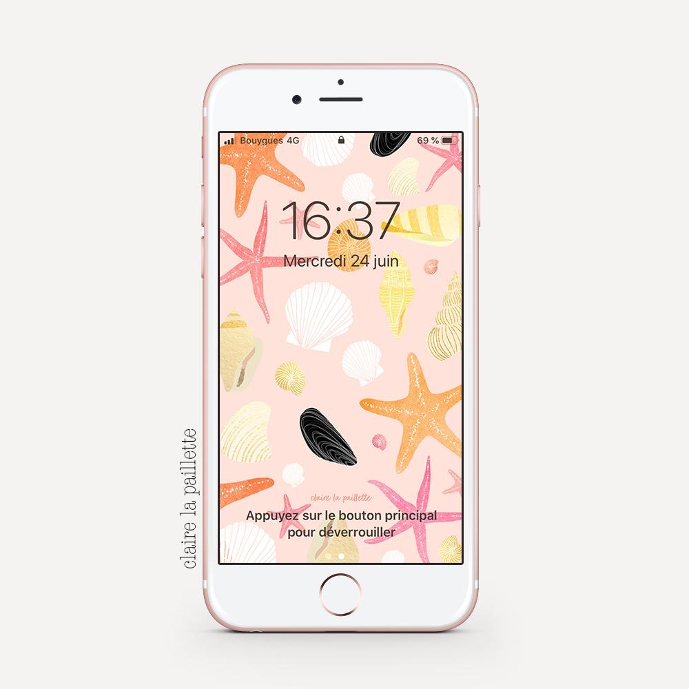fond d'écran rose avec des coquillages illustrés